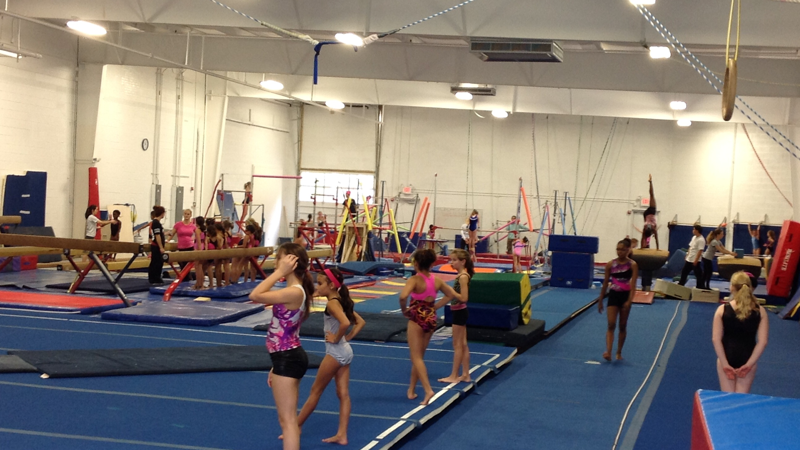 Winwin gymnastics - Win Win Currently Has A 21 Member Mason Dixon Team They Are In Practice At The Midway Facility